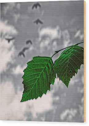Changes Wood Print by Bob Orsillo