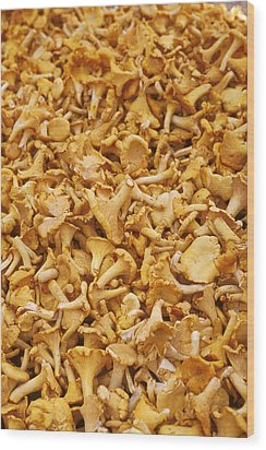 Chanterelle Mushroom Wood Print by Anonymous