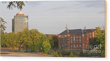 Wood Print featuring the photograph Charite And Alexanderturm In Berlin by Art Photography