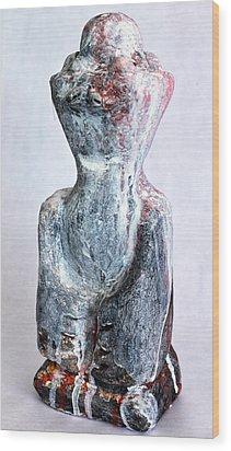 Charlatan No. 5 Wood Print by Mark M  Mellon