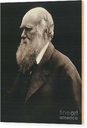 Charles Darwin By Julia Margaret Wood Print by Wellcome Images
