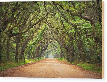 Charleston Sc Edisto Island - Botany Bay Road Wood Print