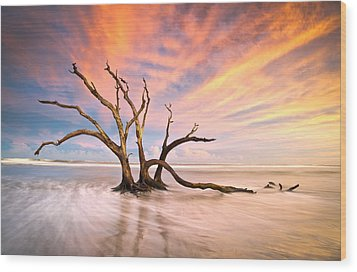Charleston Sc Sunset Folly Beach Trees - The Calm Wood Print