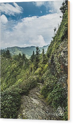 Wood Print featuring the photograph Charlies Bunion Trail by Debbie Green