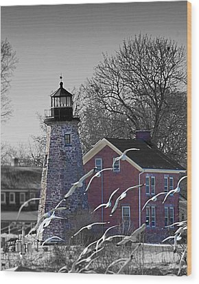 The Charlotte Genesee Lighthouse Wood Print