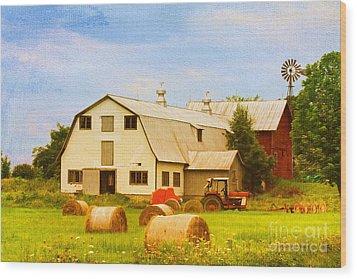 Charlotte Vermont Gem Wood Print by Deborah Benoit