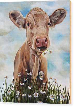 Charolais Lunch Wood Print by Laura Carey