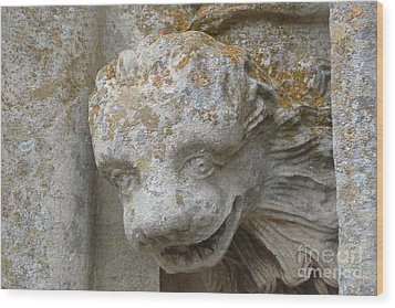 Wood Print featuring the photograph Chartres Cathedral Carved Head by Deborah Smolinske