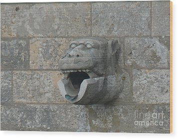 Wood Print featuring the photograph Chartres Cathedral Gargoyle Drain by Deborah Smolinske