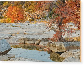 Chasing The Light At Pedernales Falls State Park Hill Country Wood Print by Silvio Ligutti