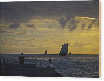 Chasing The Wind Vii Wood Print by Scott Meyer