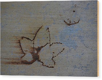 Wood Print featuring the photograph Chasing Winter by Jani Freimann