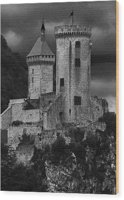 Chateau Tower Monochrome Wood Print