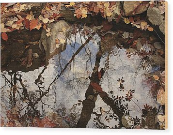 Cheaha Wilderness Reflection Alabama Wood Print by Mountains to the Sea Photo