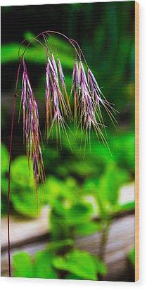 Cheating Purple Wood Print by Rhys Arithson