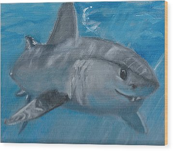 Cheeky Shark Wood Print by Jessmyne Stephenson