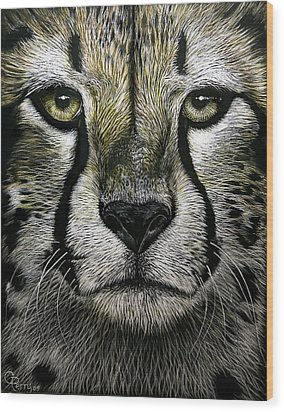 Cheetah  Wood Print by Chris Perry