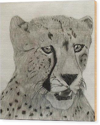 Cheetah II Wood Print by Noah Burdett