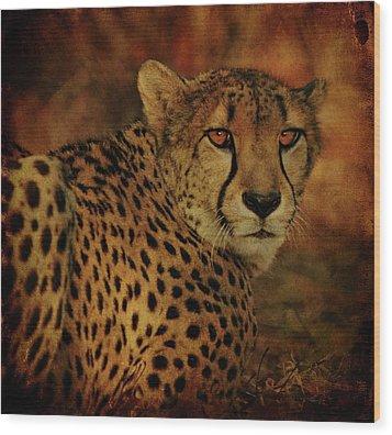 Cheetah Wood Print by Sandy Keeton