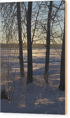Chena River Trees Wood Print by Cathy Mahnke