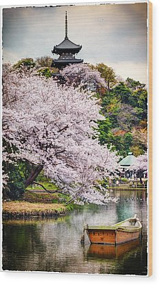Cherry Blossom 2014 Wood Print