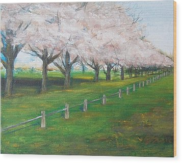 Wood Print featuring the painting Cherry Blossom Christchurch by Jane  See