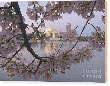 Cherry Blossom Festival   Dc Wood Print