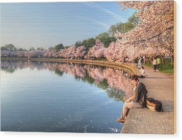 Wood Print featuring the photograph Cherry Blossom Love by Michael Donahue