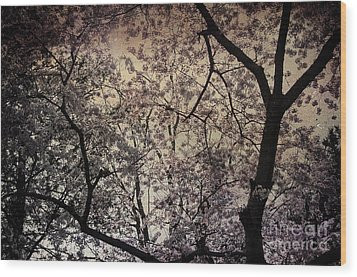 Cherry Blossom Sky Wood Print