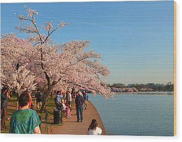 Cherry Blossoms 2013 - 010 Wood Print by Metro DC Photography