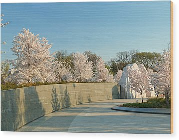 Cherry Blossoms 2013 - 022 Wood Print by Metro DC Photography
