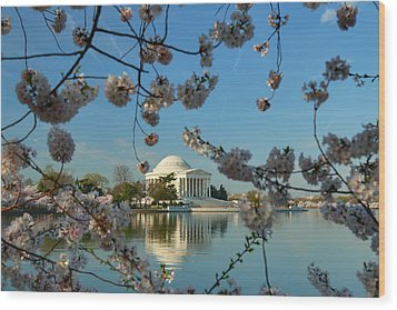 Cherry Blossoms 2013 - 039 Wood Print by Metro DC Photography