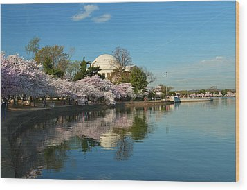 Cherry Blossoms 2013 - 041 Wood Print by Metro DC Photography