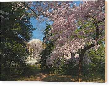 Cherry Blossoms 2013 - 047 Wood Print by Metro DC Photography
