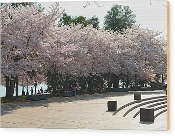 Cherry Blossoms 2013 - 059 Wood Print by Metro DC Photography