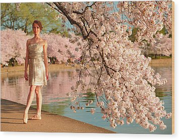Cherry Blossoms 2013 - 080 Wood Print by Metro DC Photography