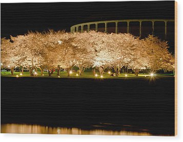 Cherry Blossoms Across The Hocking Wood Print by Shirley Tinkham