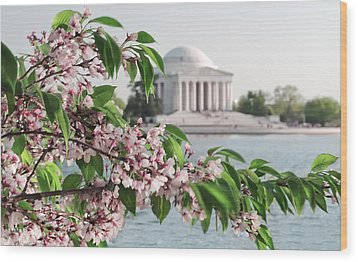 Wood Print featuring the photograph Cherry Blossoms And The Jefferson Memorial 2 by Mitchell R Grosky