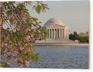 Wood Print featuring the photograph Cherry Blossoms And The Jefferson Memorial 3 by Mitchell R Grosky