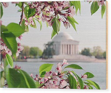 Wood Print featuring the photograph Cherry Blossoms And The Jefferson Memorial by Mitchell R Grosky