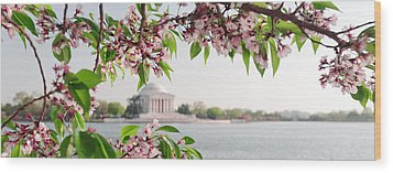 Wood Print featuring the photograph Cherry Blossoms And The Jefferson Memorial Panorama by Mitchell R Grosky