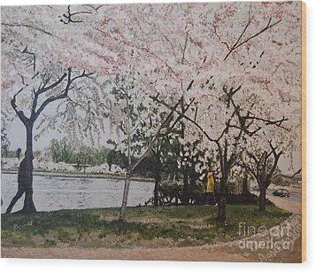 Cherry Blossoms Wood Print by Terry Stephen