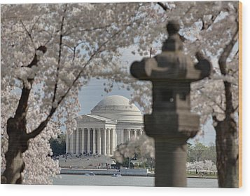 Cherry Blossoms With Jefferson Memorial - Washington Dc - 011325 Wood Print by DC Photographer