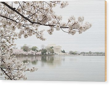 Cherry Blossoms With Jefferson Memorial - Washington Dc - 011344 Wood Print by DC Photographer