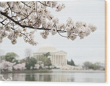 Cherry Blossoms With Jefferson Memorial - Washington Dc - 011346 Wood Print by DC Photographer
