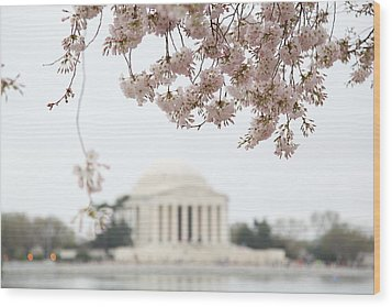 Cherry Blossoms With Jefferson Memorial - Washington Dc - 011350 Wood Print by DC Photographer