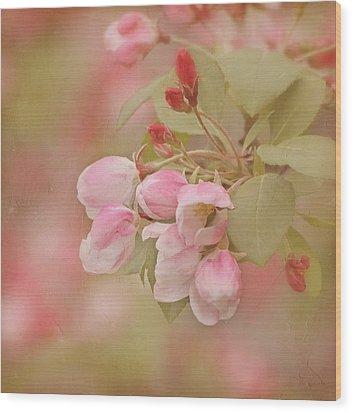 Cherry Buds Wood Print by Kim Hojnacki
