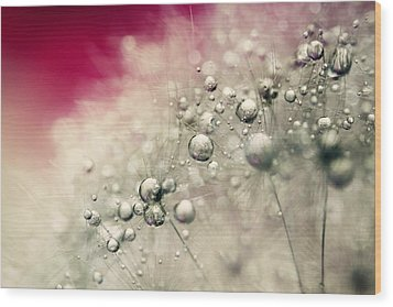 Wood Print featuring the photograph Cherry Dandy Drops by Sharon Johnstone