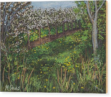 Cherry Orchard Evening Wood Print