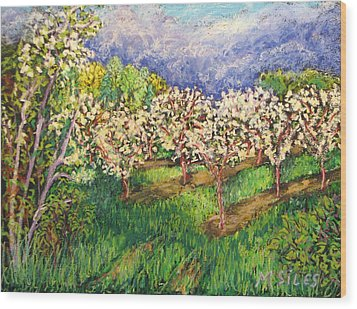 Cherry Orchard Glow Wood Print by Madonna Siles